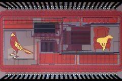Memory Chip #1